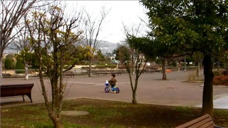 park_s